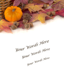 Fall Border with Colorful Leaves and Pumpkin Isolated on White Background with room or space for copy, text, or words below.  Vertical with flat layout with above view