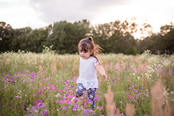 Little girl in a purple flower field during the evening golden light in the summer