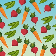 group of vegetables pattern background vector illustration design