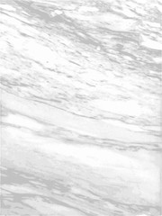 White marble texture Vector background.