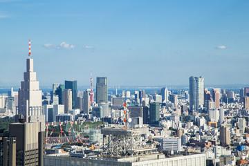 Cityscape of Shinjuku Metropolitan Government Lookout,Tokyo