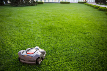 automatic lawnmower robot mower on grass, lawn. view of the large mowed lawn. copy space.