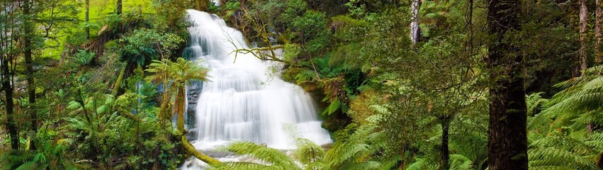 Waterfall in Otways Rainforest