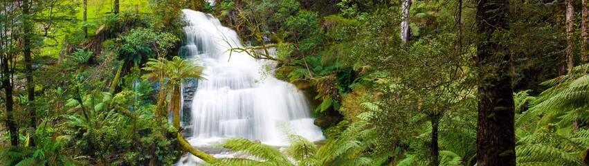 Waterfall in Otways Rainforest