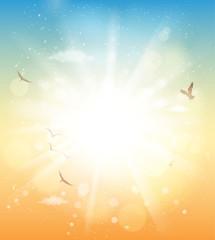 summer sunlight