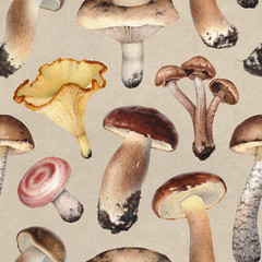 Watercolor illustrations of mushrooms. Seamless pattern