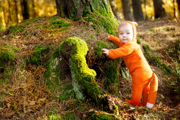 Cute baby girl dressed in fox costume Wall mural