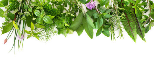 Photo sur Toile Condiment Fresh garden herbs isolated on white background