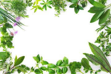 Wall Mural - Fresh garden herbs isolated on white background