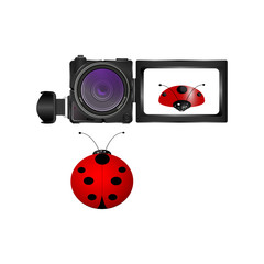 realistic digital video camera and ladybug on white background