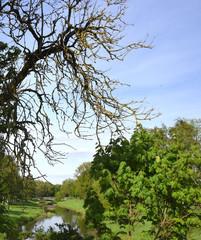 Idyllische Flusslandschaft an der Schwarzen Elster in  Senftenberg