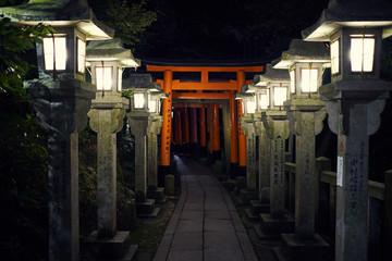 Torii Gates of Fushimi Inari-taisha in Kyoto, Japan