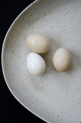 Egg Still Life 02