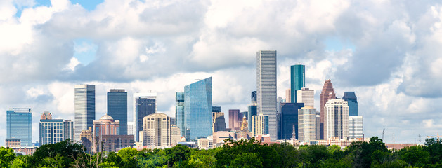 Houston, tx skyline cityscape 2