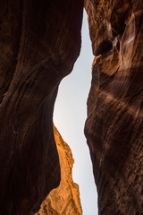 Foto op Canvas Canyon The Siq, a sandstone canyon in Petra, Jordan