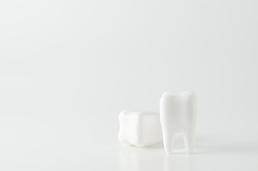 Close up of white teeth dental model on white background
