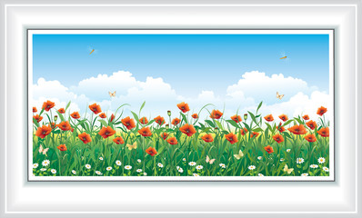 Summer landscape. Poppy field