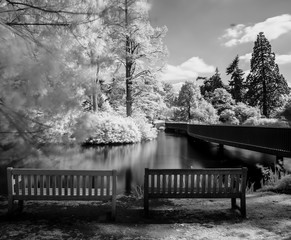Infrared photography of Kew Gardens in London
