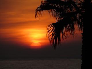 Atardecer (sunset)