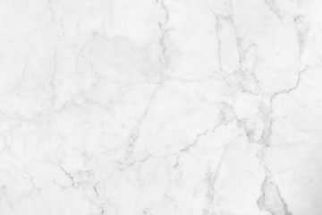 Abstract white marble background with natural motifs.