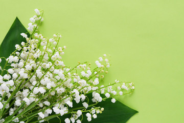 Fototapete - Romantic gentle flower background, lily of the valley on a green background, top view, flat layout.
