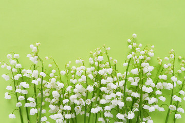 Photo sur Plexiglas Muguet de mai Romantic gentle flower background, lily of the valley on a green background, top view, flat layout.