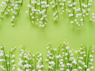Wall Murals Lily of the valley Romantic gentle flower background, lily of the valley on a green background, top view, flat layout.