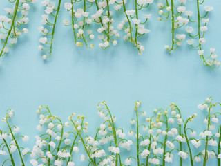 Wall Murals Lily of the valley Romantic gentle flower background, lily of the valley on a blue background, top view, flat layout.