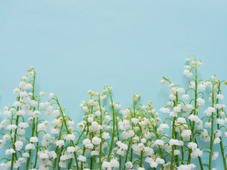 Romantic gentle flower background, lily of the valley on a blue background, top view, flat layout.