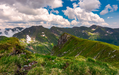 grassy hill on rocky cliffs of Fagaras mountains. beautiful summer landscape of Southern Carpathians, Romania