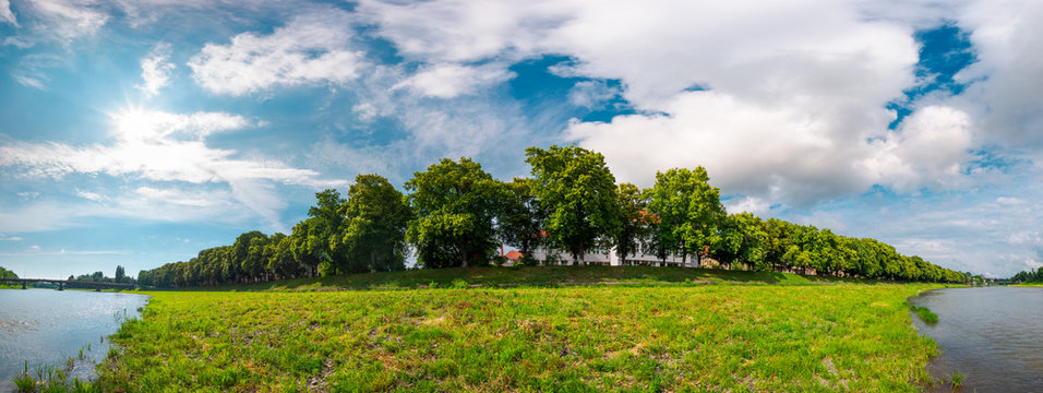 panorama of the longest linden alley in blossom. beautiful landscape on a sunny day with some clouds on a blue summer sky. Location Uzhgorod, Ukraine