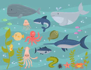 Sea animals vector creatures characters cartoon ocean wildlife marine underwater aquarium life water graphic aquatic tropical beasts illustration.