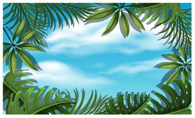 Beautiful Sky Template with Tree Leaf