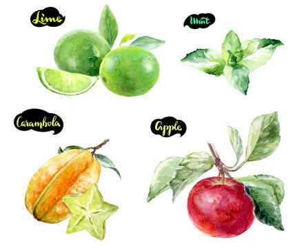 carambola lime apple mint watercolor