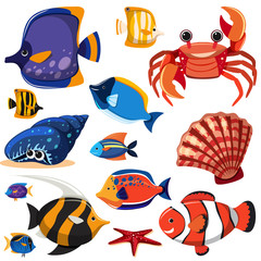 A Set of Sea Creatures