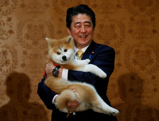 Japanese PM Abe poses with an Akita Inu puppy presented to Russian figure skating gold medallist Zagitova, in Moscow