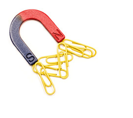 U-shaped red and blue magnet attracting paper clips isolated on white background