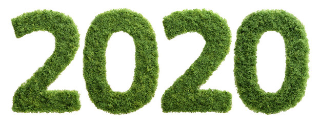 2020 green grass ecology year concept isolated