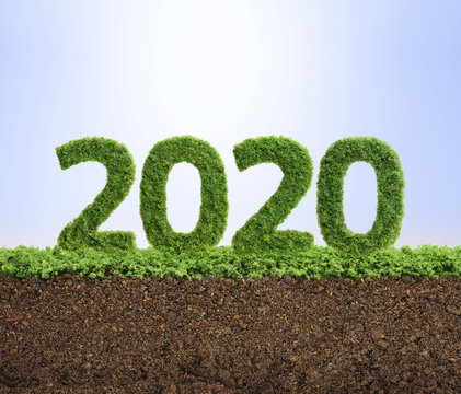 2020 green ecology year concept