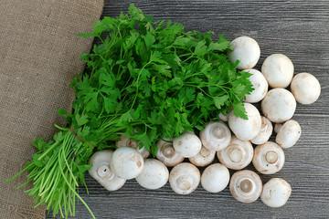 culture mushrooms