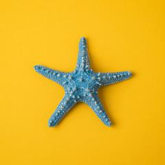 Blue starfish over yellow background