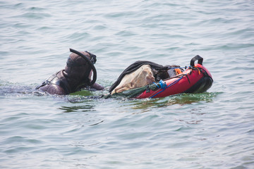Plongeurs en apnée