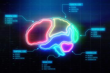 Digital brain wallpaper