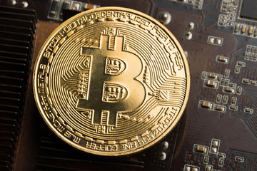 Gold coin bitcoin on the graphics card