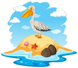 Pelican Bird on Small Island