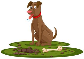 A Cute Dog Digging Bone