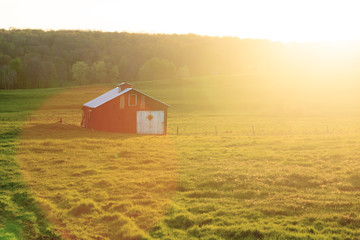 An Old Shed at Golden Hour