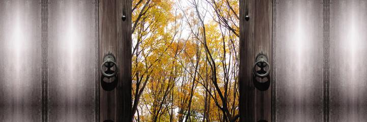 扉の向こうの秋