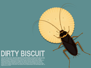 A cockroach is occupying a piece of biscuit