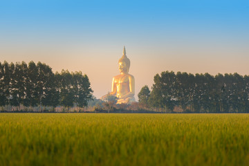 The Buddha in the Rice field Thailand ,AngThong Province